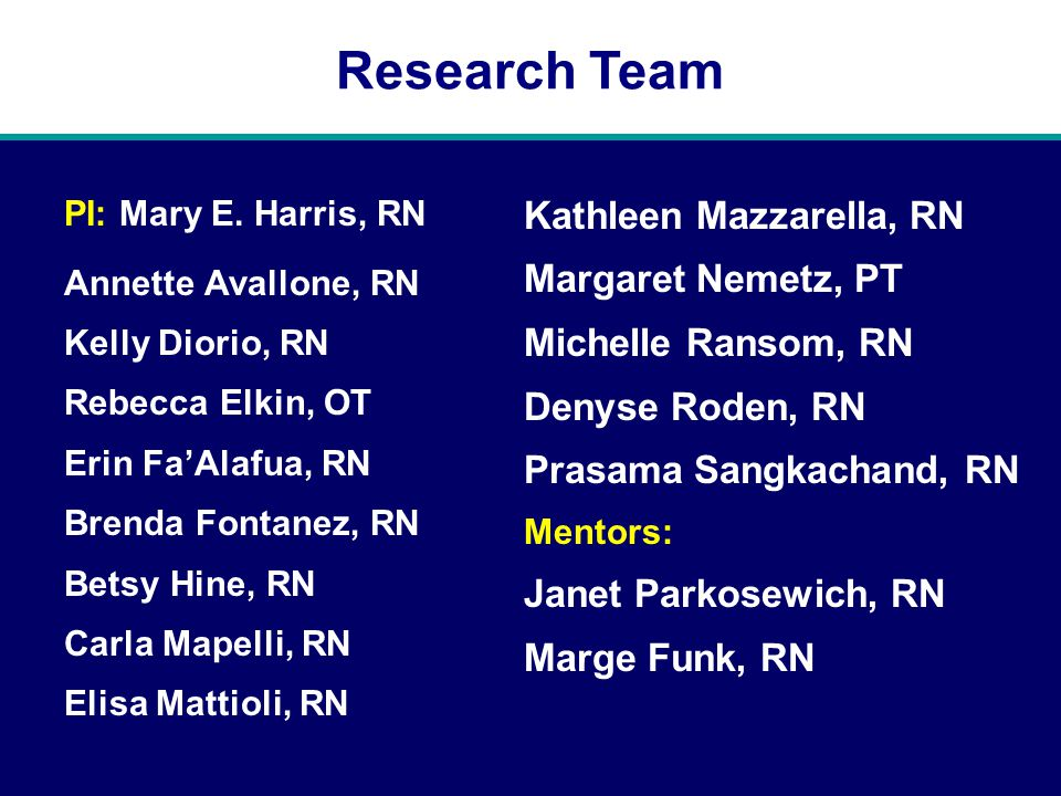 Research Team PI: Mary E.