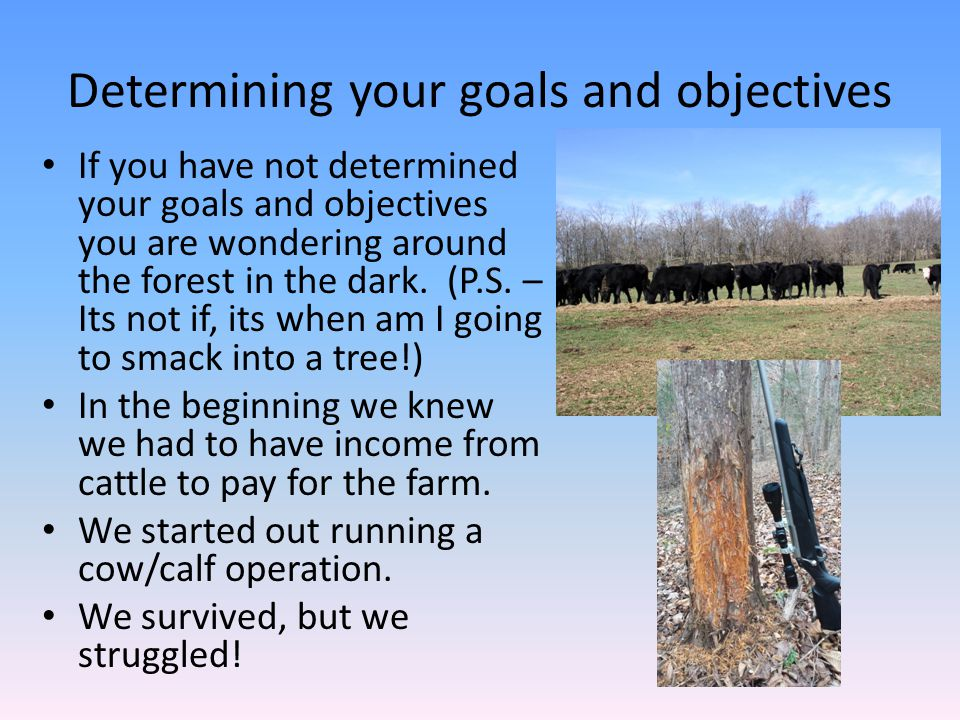 Determining your goals and objectives If you have not determined your goals and objectives you are wondering around the forest in the dark. (P.S. – It