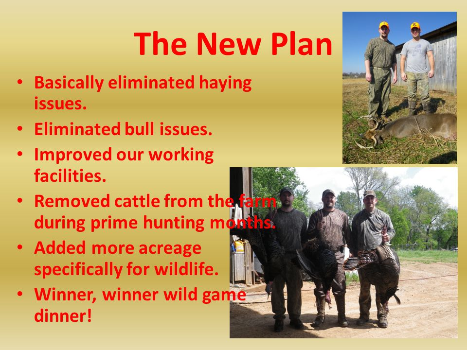 The New Plan Basically eliminated haying issues. Eliminated bull issues. Improved our working facilities. Removed cattle from the farm during prime hu