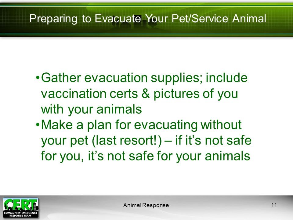 Animal Response11 Preparing to Evacuate Your Pet/Service Animal Gather evacuation supplies; include vaccination certs & pictures of you with your animals Make a plan for evacuating without your pet (last resort!) – if it's not safe for you, it's not safe for your animals