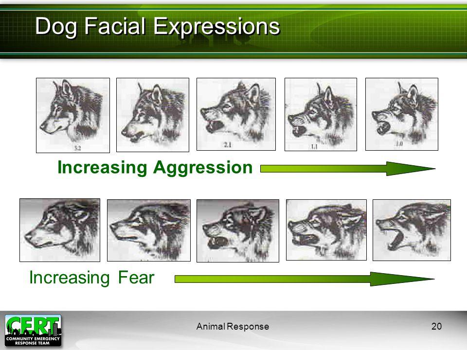 Animal Response20 Increasing Aggression Dog Facial Expressions Increasing Fear