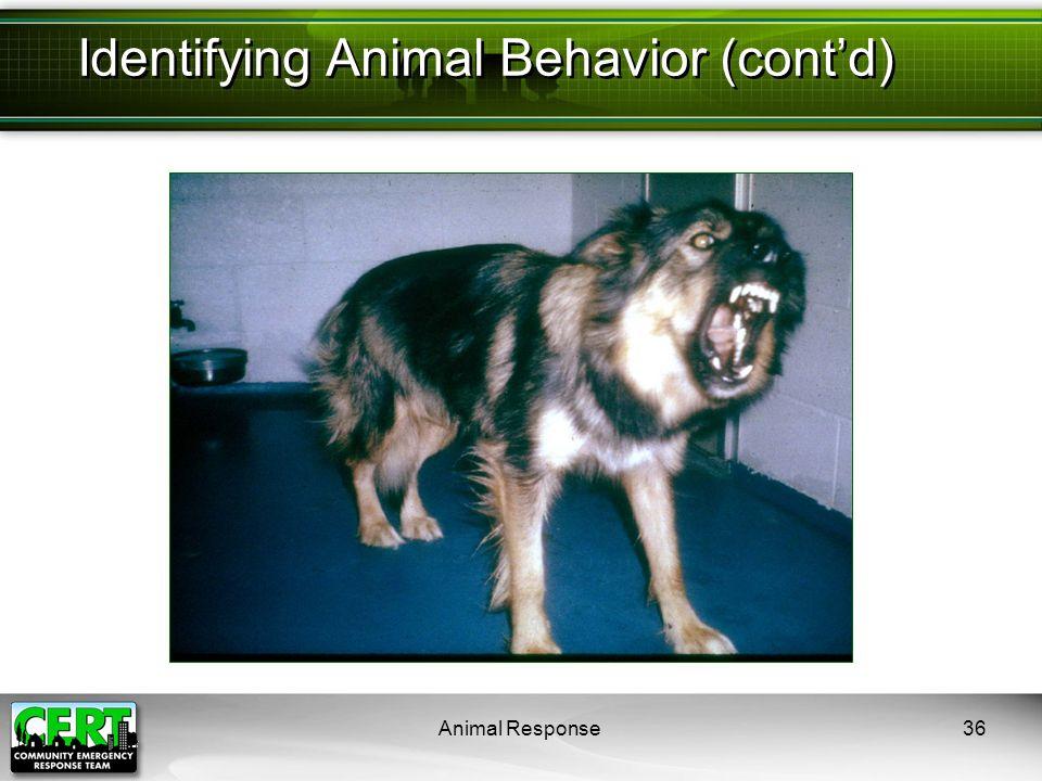 Animal Response36 Identifying Animal Behavior (cont'd)
