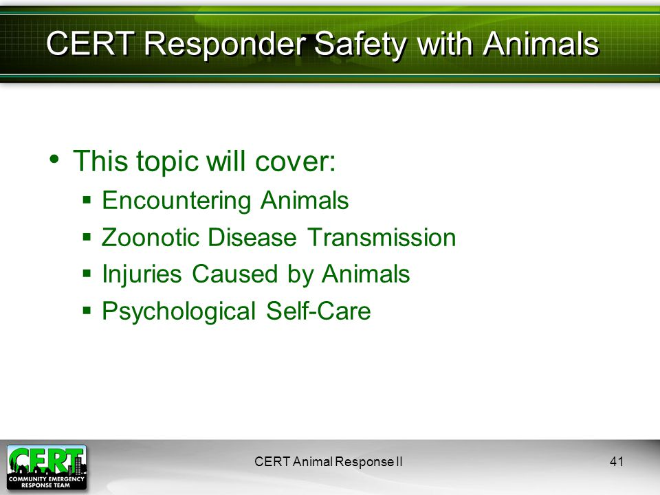 This topic will cover:  Encountering Animals  Zoonotic Disease Transmission  Injuries Caused by Animals  Psychological Self-Care CERT Animal Response II41 CERT Responder Safety with Animals