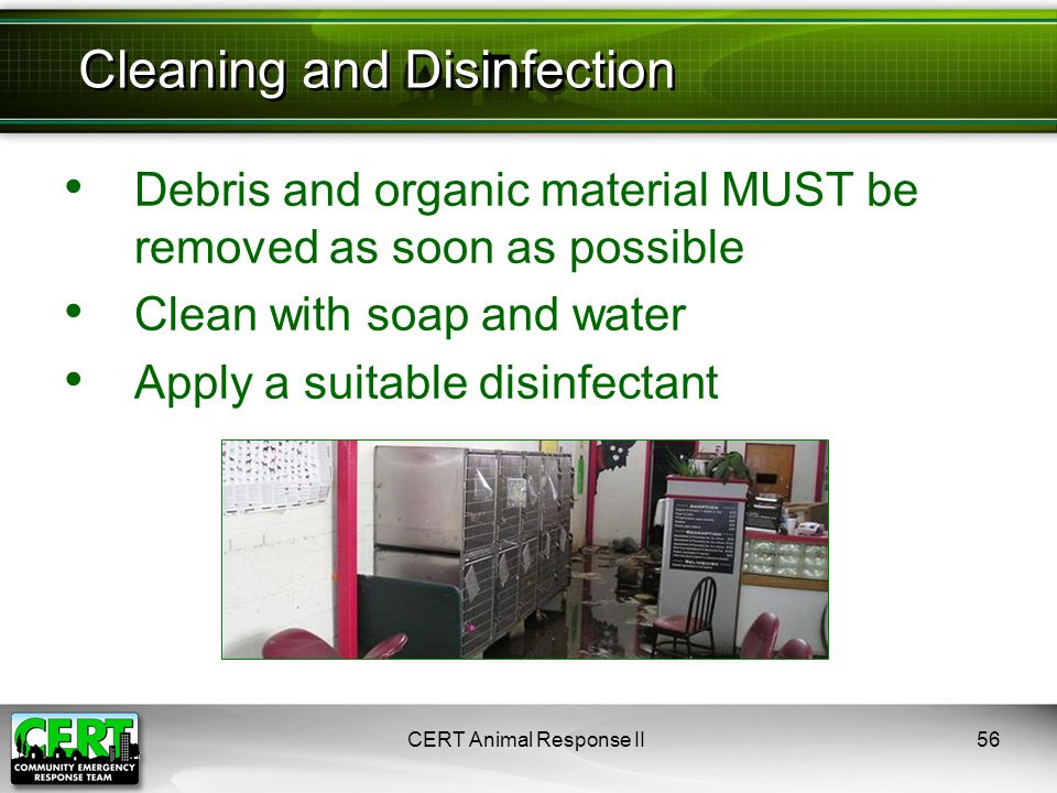 Debris and organic material MUST be removed as soon as possible Clean with soap and water Apply a suitable disinfectant CERT Animal Response II56 Clea
