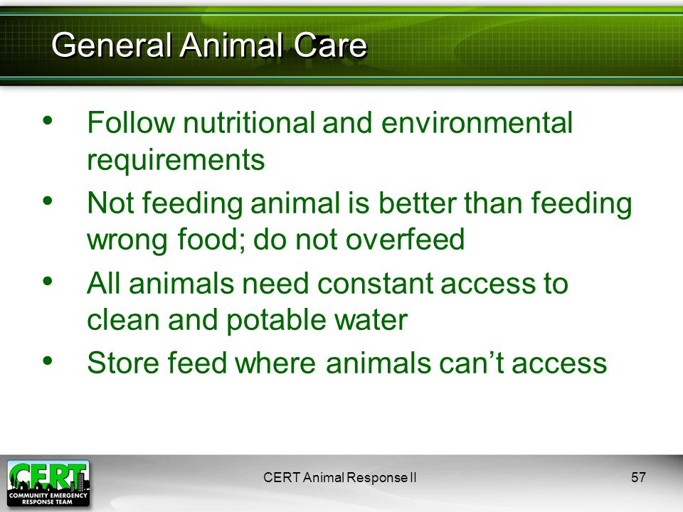 Follow nutritional and environmental requirements Not feeding animal is better than feeding wrong food; do not overfeed All animals need constant access to clean and potable water Store feed where animals can't access CERT Animal Response II57 General Animal Care