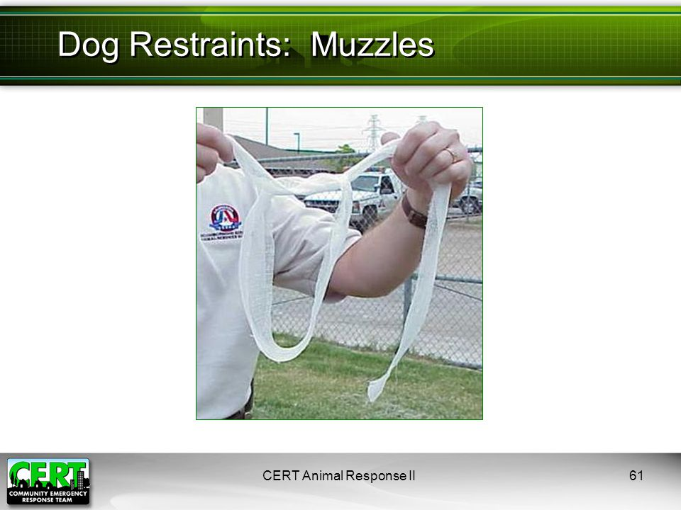 CERT Animal Response II61 Dog Restraints: Muzzles
