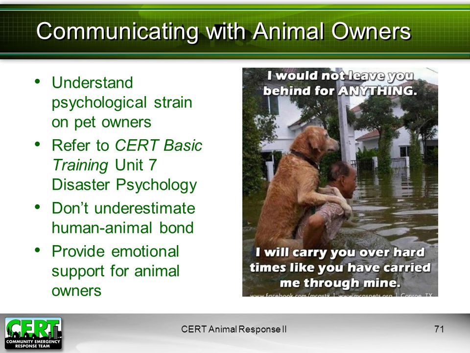 CERT Animal Response II71 Understand psychological strain on pet owners Refer to CERT Basic Training Unit 7 Disaster Psychology Don't underestimate hu