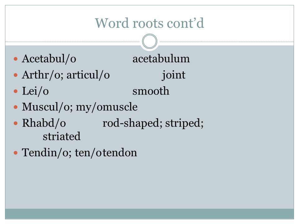 Acetabul/oacetabulum Arthr/o; articul/ojoint Lei/osmooth Muscul/o; my/omuscle Rhabd/orod-shaped; striped; striated Tendin/o; ten/otendon