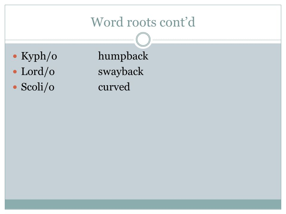 Word roots cont'd Kyph/ohumpback Lord/oswayback Scoli/ocurved