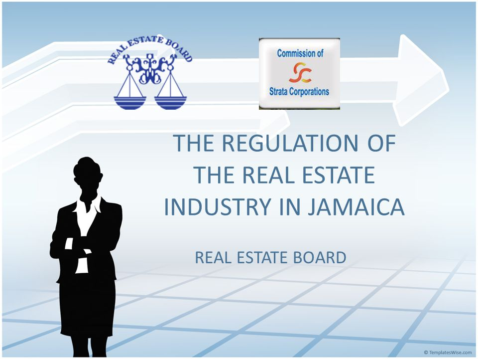 Describe the process and timeline your jurisdiction went through to establish your Real Estate Regulatory Agency.