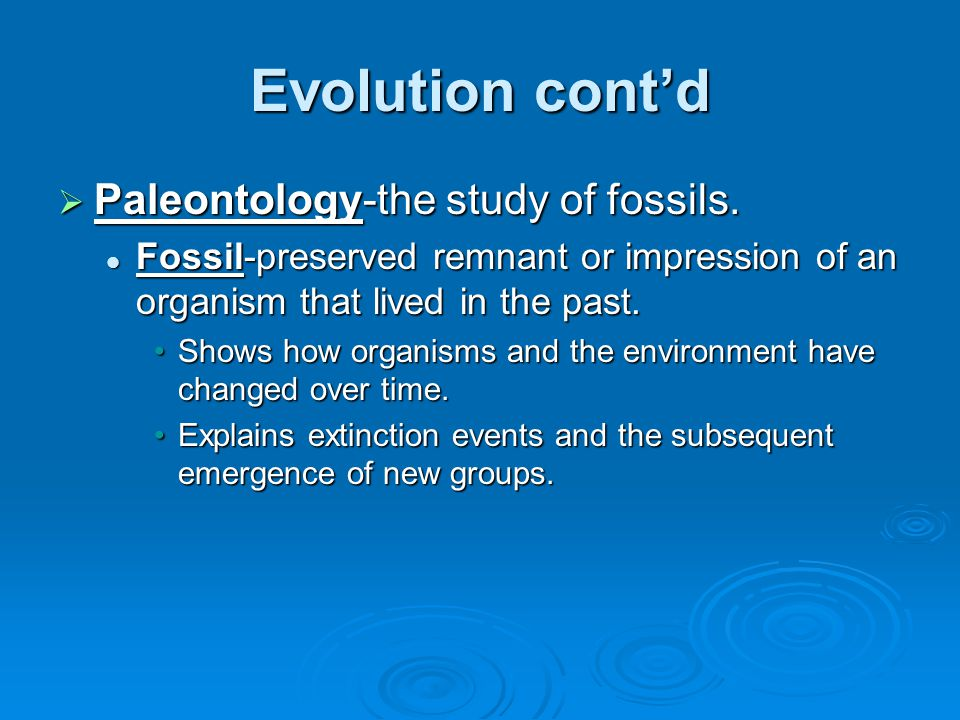 Evolution cont'd  Biogeography-the geographical distribution of species.