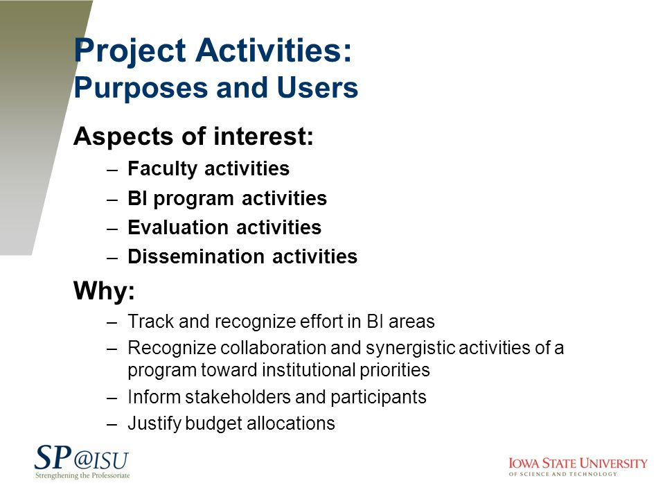 Project Activities: Purposes and Users Aspects of interest: –Faculty activities –BI program activities –Evaluation activities –Dissemination activities Why: –Track and recognize effort in BI areas –Recognize collaboration and synergistic activities of a program toward institutional priorities –Inform stakeholders and participants –Justify budget allocations