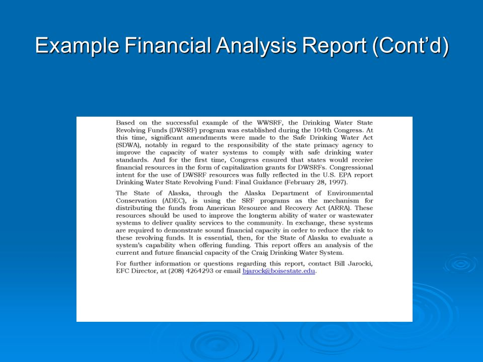 Example Financial Analysis Report (Cont'd)