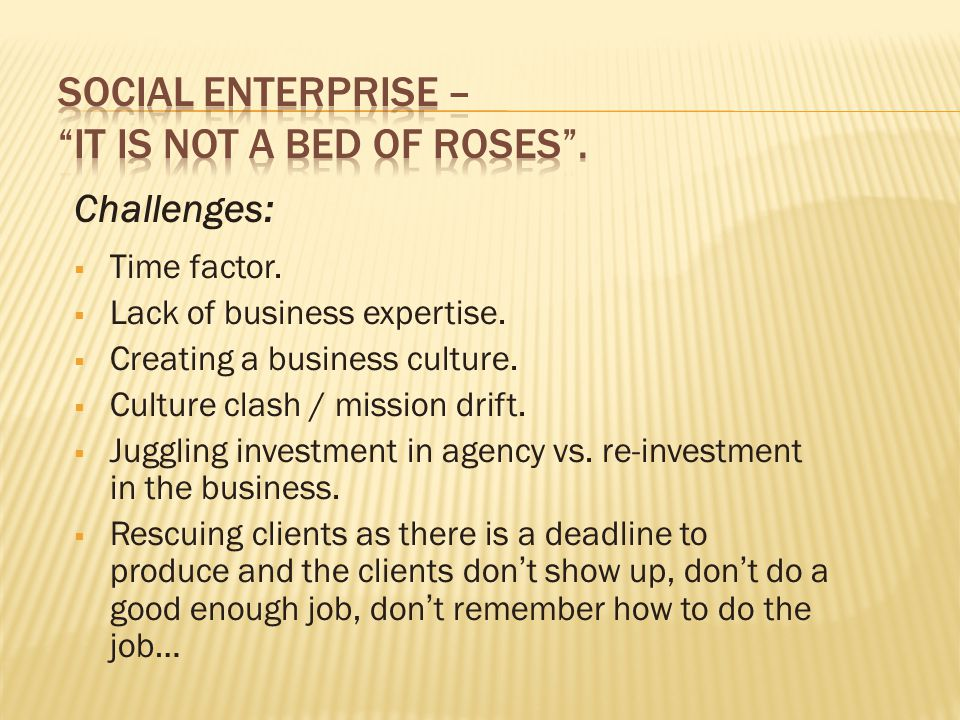 Challenges:  Time factor.  Lack of business expertise.