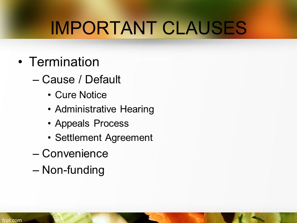 IMPORTANT CLAUSES Termination –Cause / Default Cure Notice Administrative Hearing Appeals Process Settlement Agreement –Convenience –Non-funding