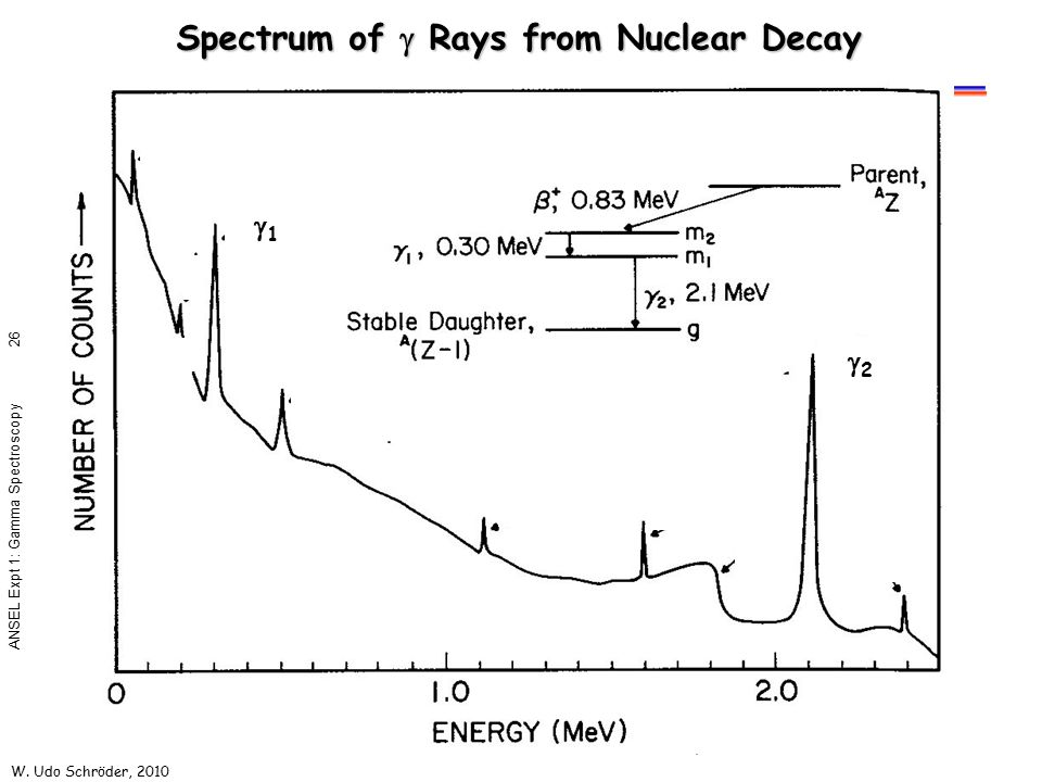 W. Udo Schröder, 2010 ANSEL Expt 1: Gamma Spectroscopy 26 Spectrum of  Rays from Nuclear Decay 22 11