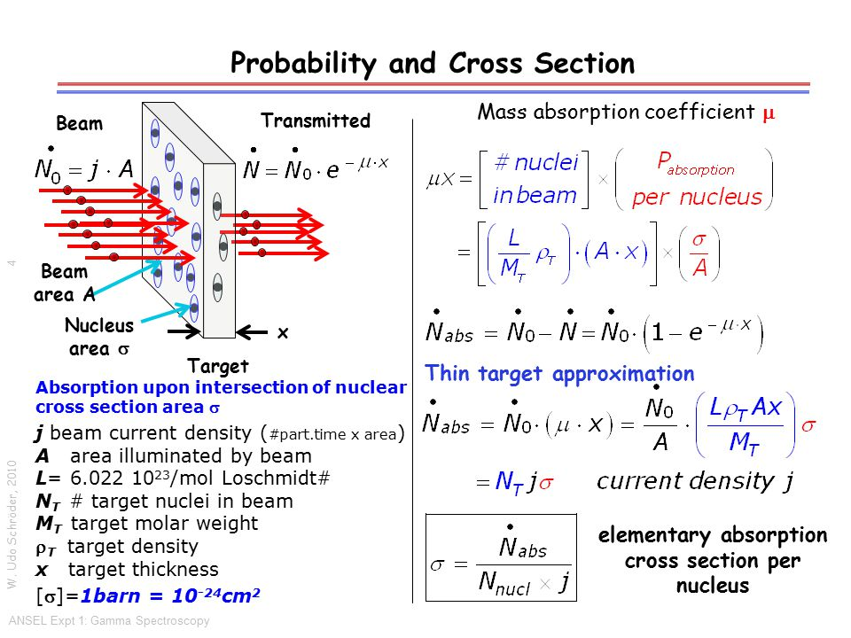 Differential Cross Section/Probability W.
