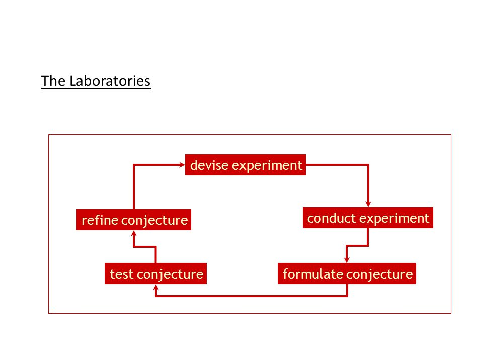 The Laboratories test conjecture refine conjecture conduct experiment devise experiment formulate conjecture