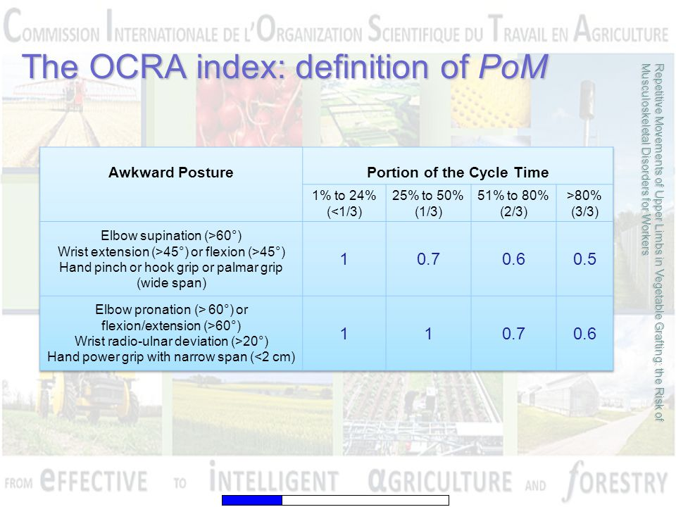 The OCRA index: definition of PoM Repetitive Movements of Upper Limbs in Vegetable Grafting: the Risk of Musculoskeletal Disorders for Workers