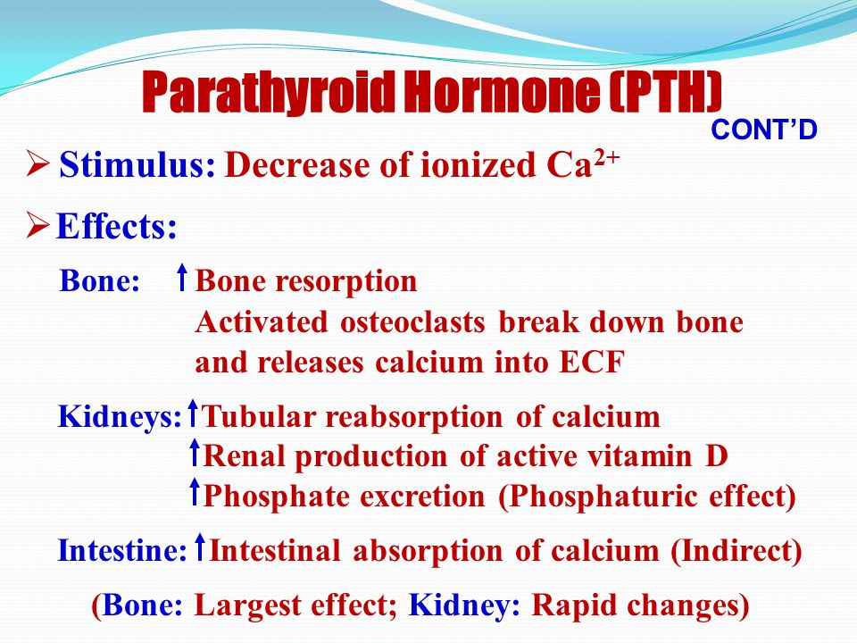 (1) Parathyroid Hormone (PTH)  Secreted by parathyroid glands  Molecular mass: 9.5 kDa  Full biologic activity : NT 1/3 (PTH 1-34 )  Acts via membrane-bound receptor (G-protein stimulation and increase intracellular cAMP)  Target organs: Bone, kidney, intestine