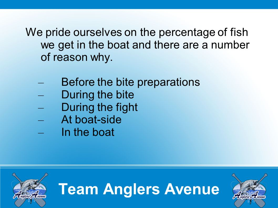 Team Anglers Avenue We pride ourselves on the percentage of fish we get in the boat and there are a number of reason why.
