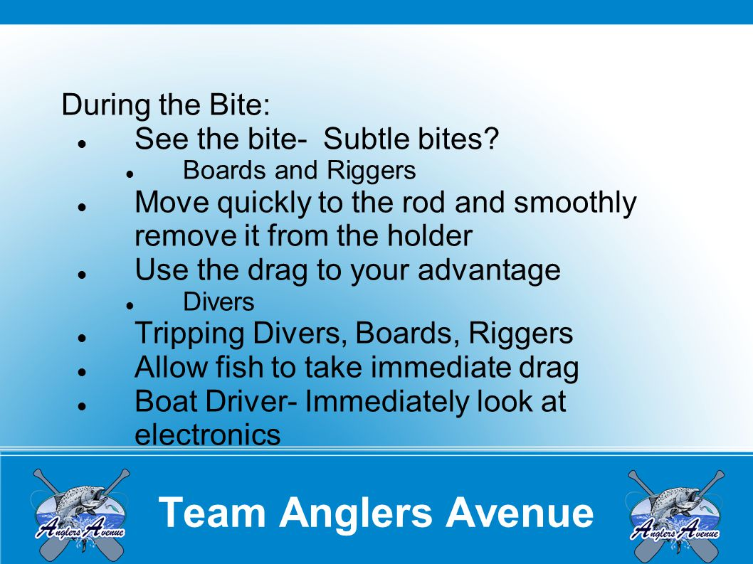 Team Anglers Avenue During the Bite: See the bite- Subtle bites.