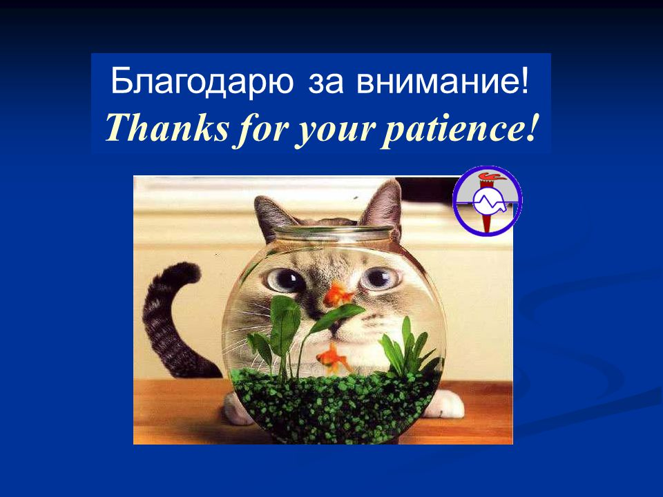 Благодарю за внимание! Thanks for your patience!