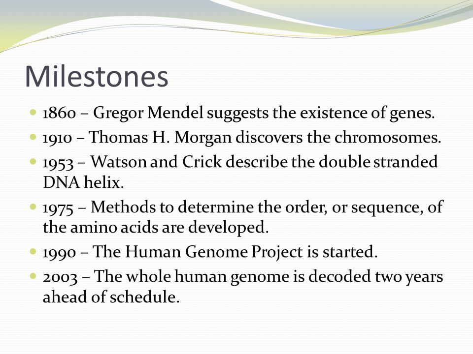 Milestones 1860 – Gregor Mendel suggests the existence of genes. 1910 – Thomas H. Morgan discovers the chromosomes. 1953 – Watson and Crick describe t