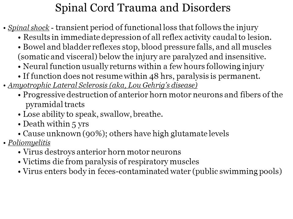 Spinal Cord Trauma and Disorders Spinal shock - transient period of functional loss that follows the injury Results in immediate depression of all ref