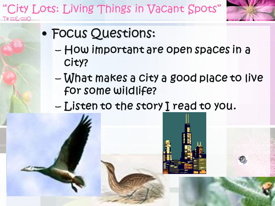 City Lots: Living Things in Vacant Spots Te 113L-113O Focus Questions:Focus Questions: –How important are open spaces in a city.