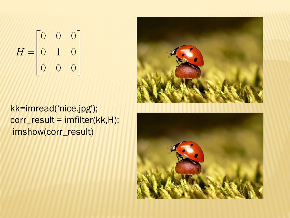 kk=imread('nice.jpg ); corr_result = imfilter(kk,H); imshow(corr_result)