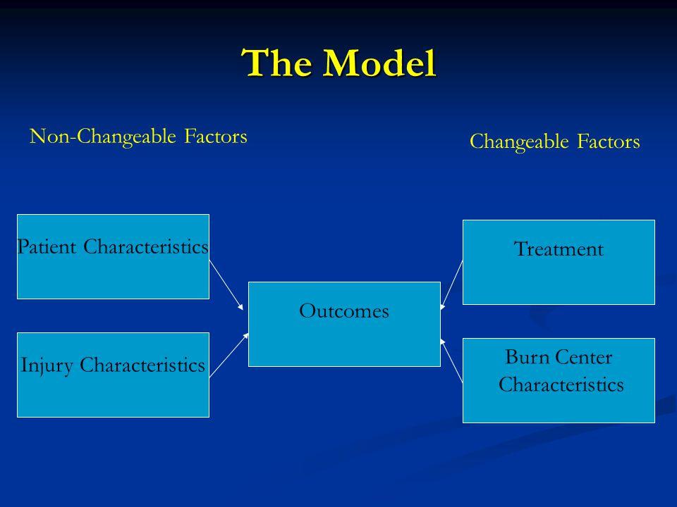 Patient Characteristics Injury Characteristics Treatment Burn Center Characteristics Outcomes Non-Changeable Factors Changeable Factors The Model
