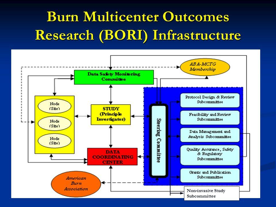 Burn Multicenter Outcomes Research (BORI) Infrastructure Non-invasive Study Subcommittee