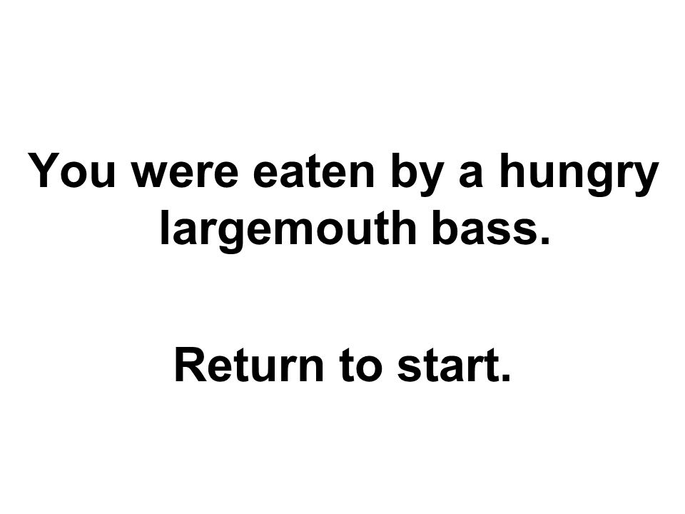You were eaten by a hungry largemouth bass. Return to start.
