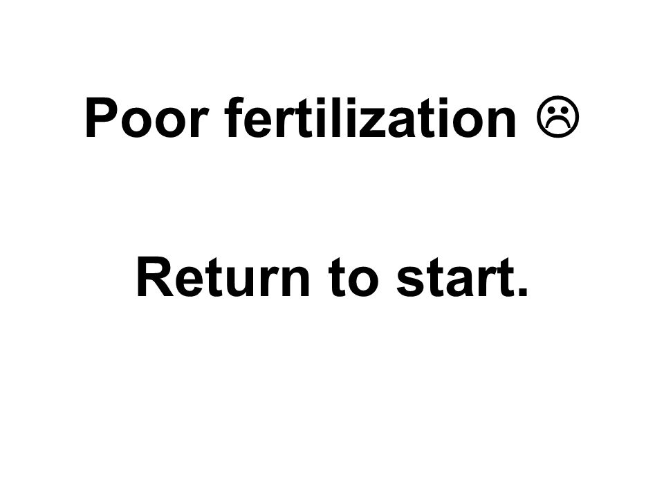 Poor fertilization  Return to start.