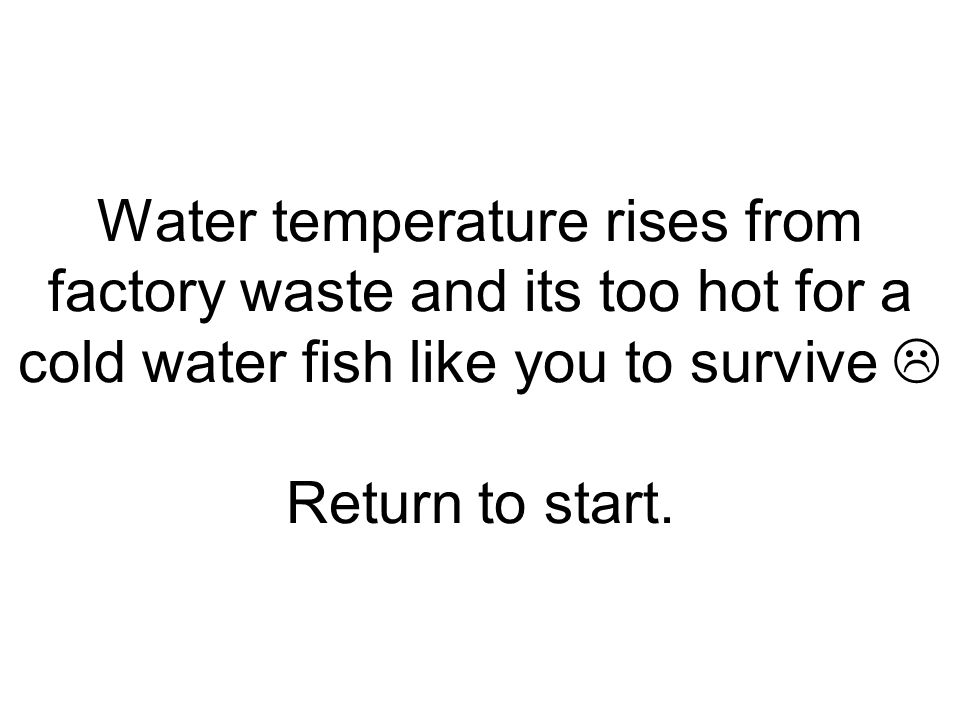 Water temperature rises from factory waste and its too hot for a cold water fish like you to survive  Return to start.