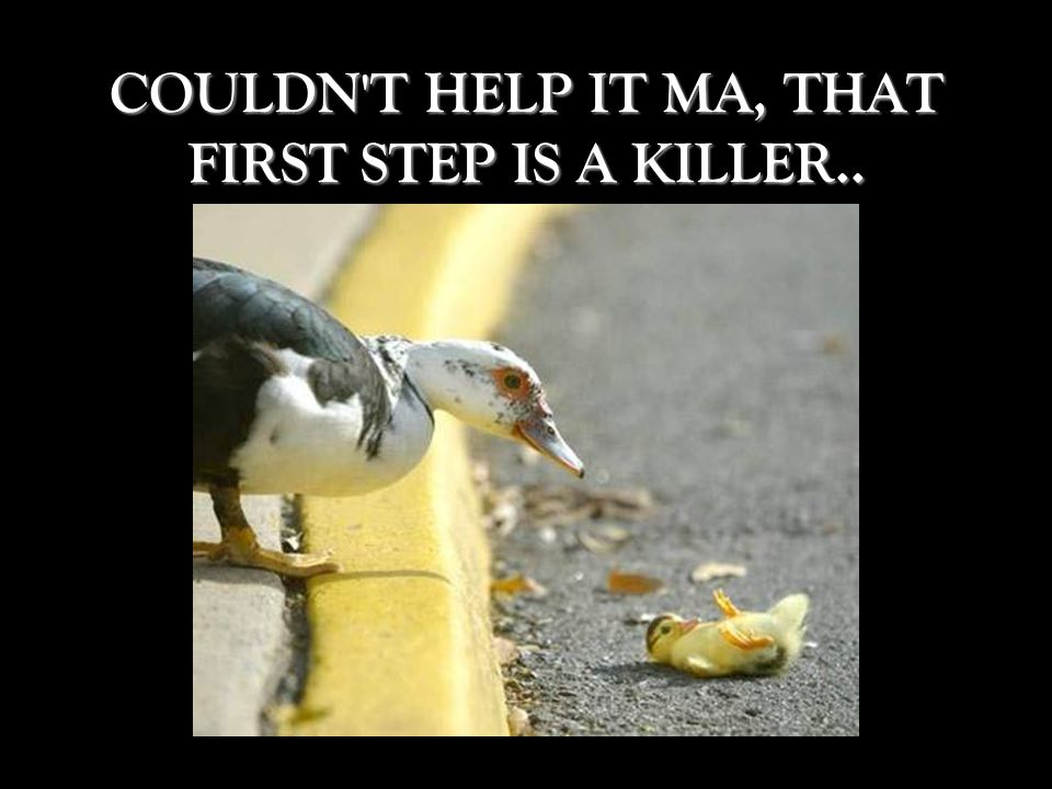 COULDN T HELP IT MA, THAT FIRST STEP IS A KILLER..