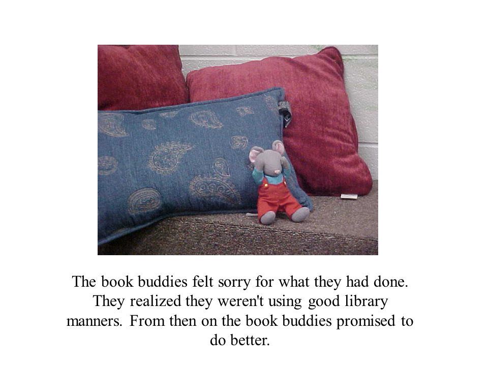 The book buddies felt sorry for what they had done.