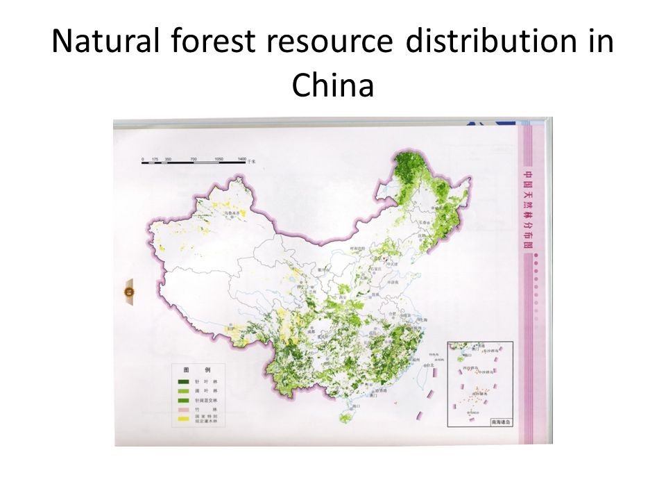 Natural forest resource distribution in China