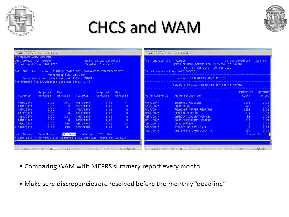 """CHCS and WAM Comparing WAM with MEPRS summary report every month Make sure discrepancies are resolved before the monthly """"deadline"""""""