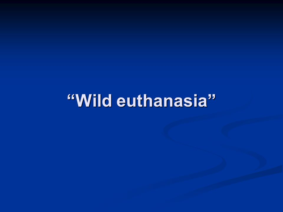 """""""Wild euthanasia"""""""