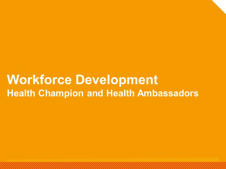 Workforce Development Health Champion and Health Ambassadors