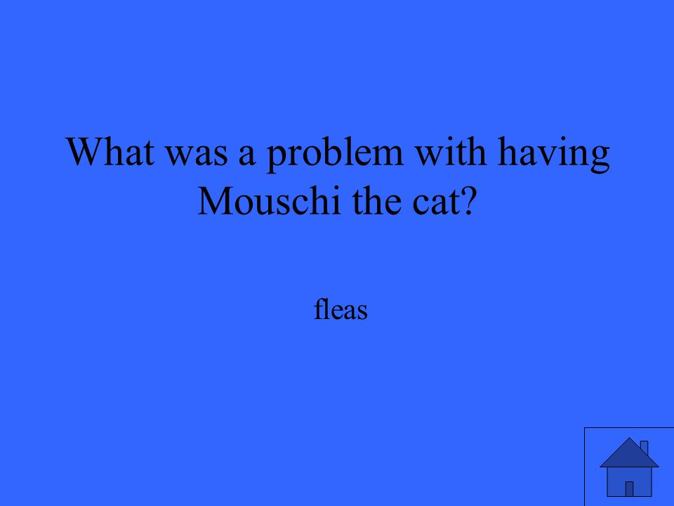 What was a problem with having Mouschi the cat? fleas