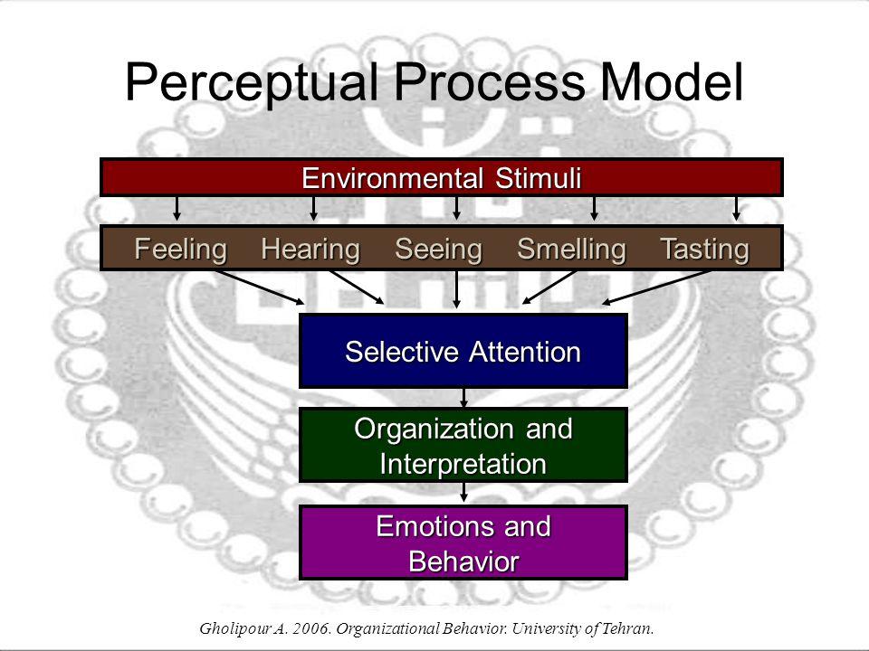 Selective Attention Emotions and Behavior Organization and Interpretation Perceptual Process Model Environmental Stimuli Feeling Hearing Seeing Smelling Tasting