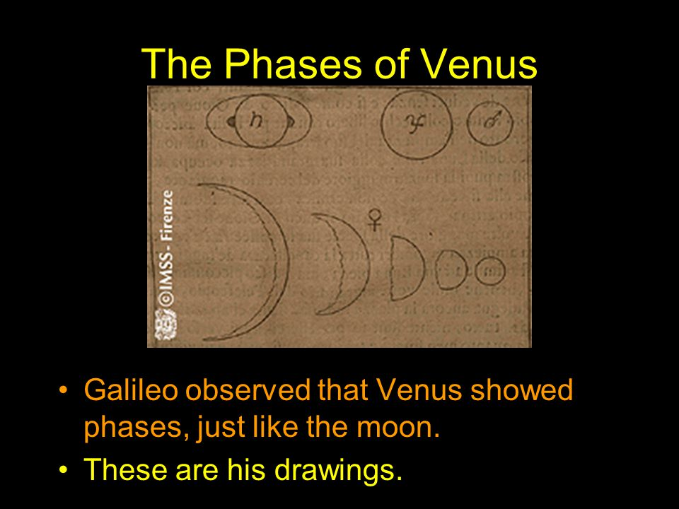 The Phases of Venus Galileo observed that Venus showed phases, just like the moon. These are his drawings.