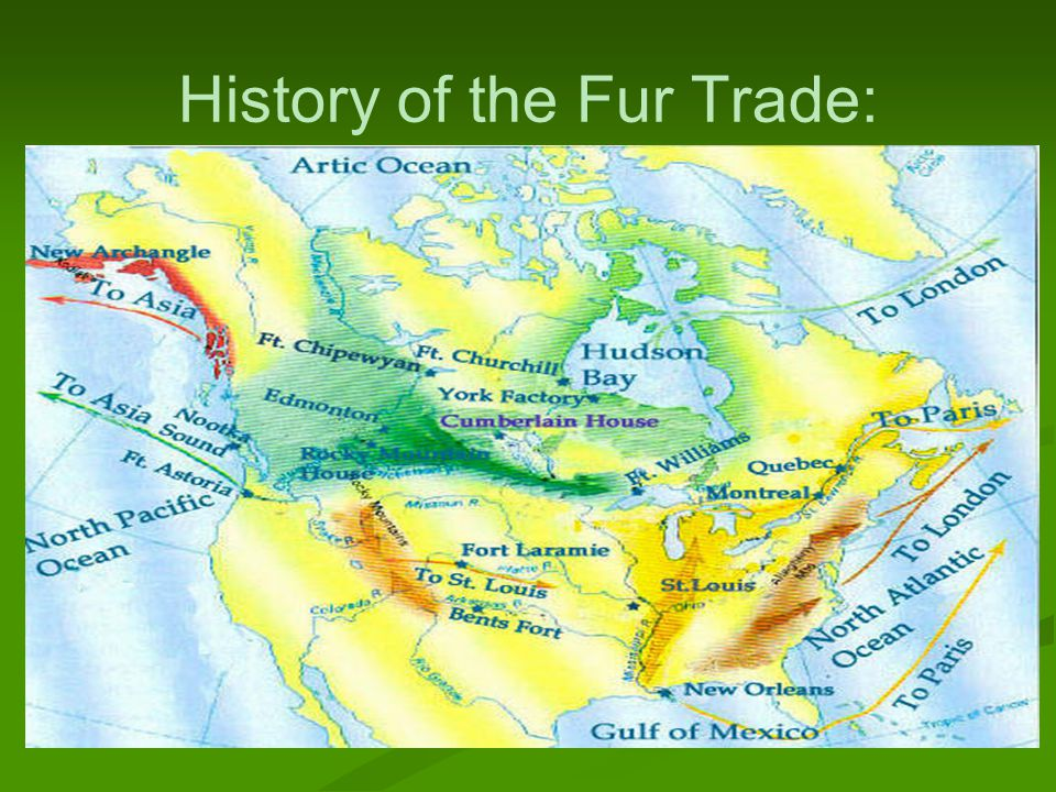 History of the Fur Trade: