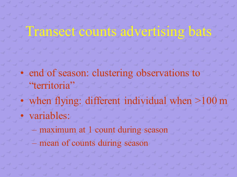Transect counts advertising bats end of season: clustering observations to territoria when flying: different individual when >100 m variables: –maximum at 1 count during season –mean of counts during season