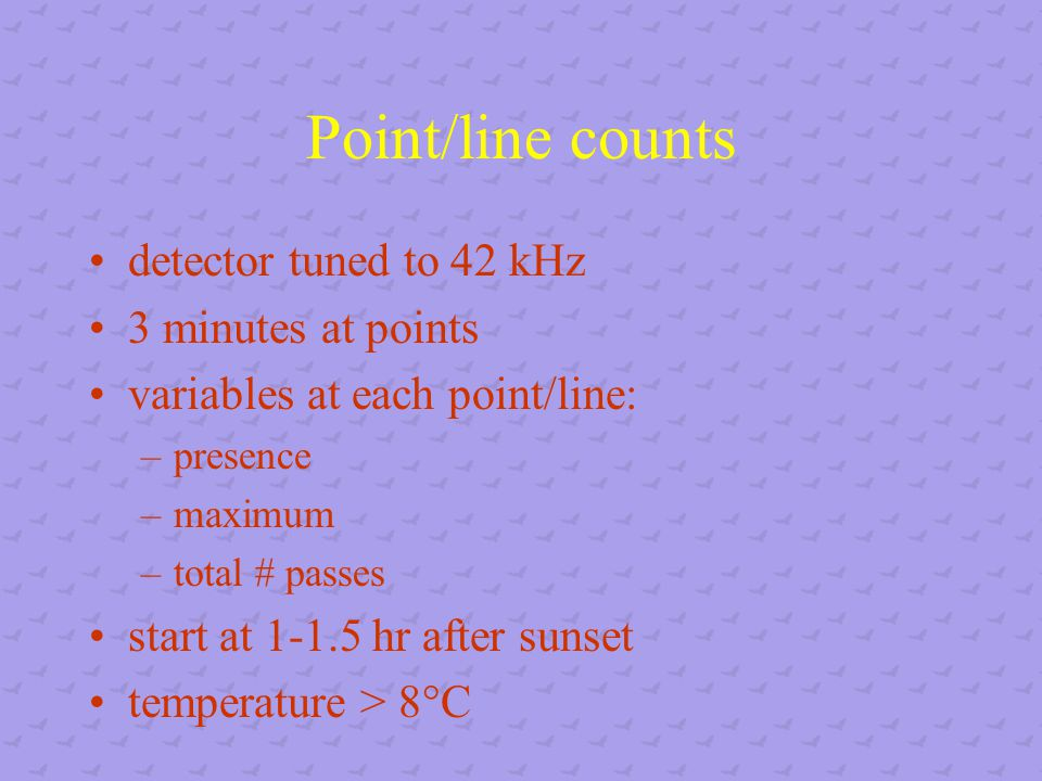 Point/line counts detector tuned to 42 kHz 3 minutes at points variables at each point/line: –presence –maximum –total # passes start at 1-1.5 hr after sunset temperature > 8°C