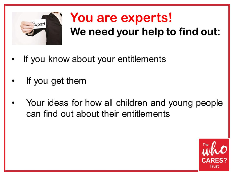 You are experts.
