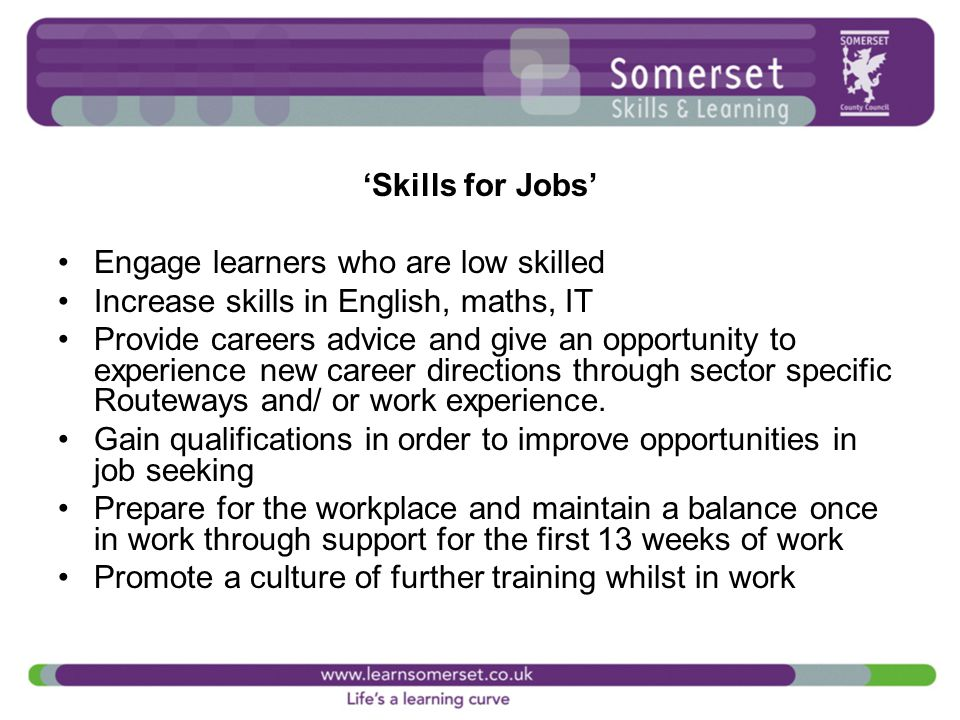 'Skills for Jobs' Engage learners who are low skilled Increase skills in English, maths, IT Provide careers advice and give an opportunity to experience new career directions through sector specific Routeways and/ or work experience.